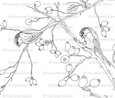 winterbirdslake