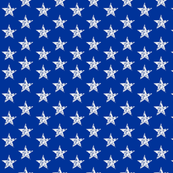 Distressed Back the Blue Stars