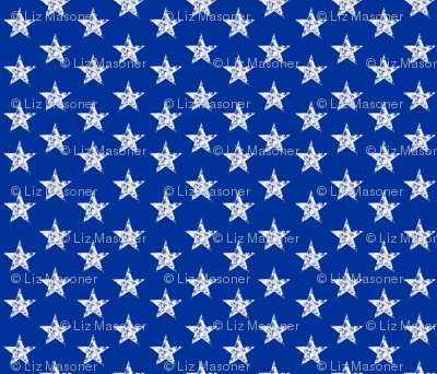 Large Back the Blue Stars