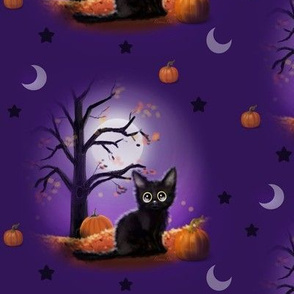 Halloween night black cat M