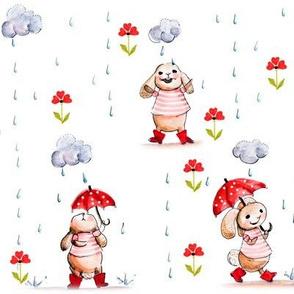 Rabbit in the rain