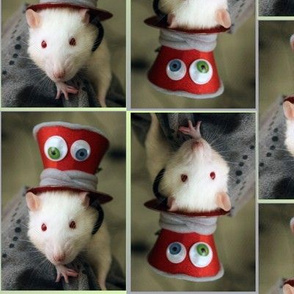 Fancy Rat with a Fancy Hat - The Mad Ratter