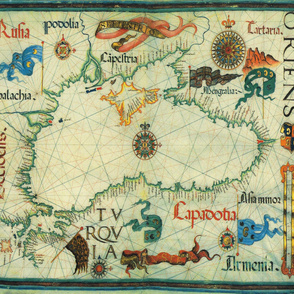 "1559 Black Sea Map (42""W)"