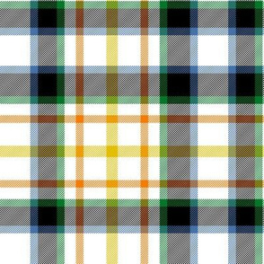 "MacLaren dress tartan, 6"" muted"