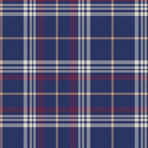 Tucker Plaid 2