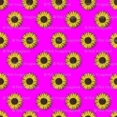 sunflower pattern pink