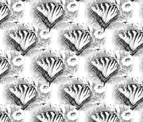 B_W Butterfly fabric by susan_moore_smith on Spoonflower - custom fabric