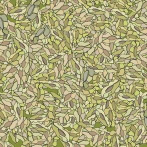 Seedpods on Green