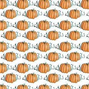 Pumpkins (small)