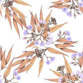 Eucalyptus & Gumnuts Burnished, Purple Blossom