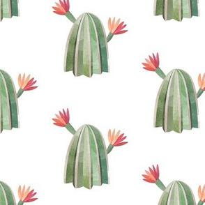 Floral Cactus-02