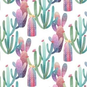 Arizona cactus-01