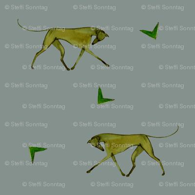 trotting greyhound, grey, yellow
