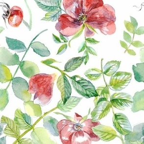 Watercolor Briar Flowers