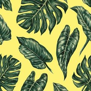 BIG Tropical Leaves