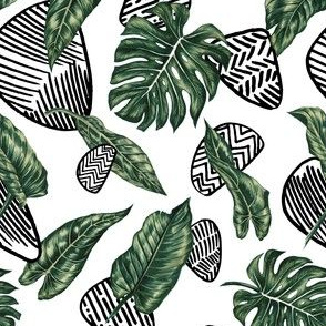 Tropical  & Graphic Elements