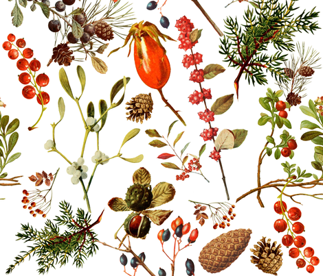 vintage botanical winter -lg. fabric by redbriarstudio on Spoonflower - custom fabric