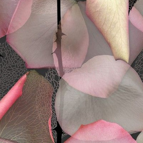 Deconstructed Rose DARK