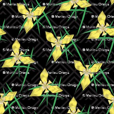 Geometric Trimezia Floral