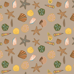 sandy shells