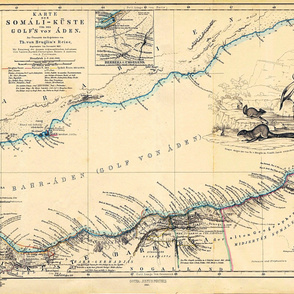 "1860 Gulf of Aden Map (54""W)"