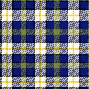 "Inverary township of Ontario tartan, 3"" dark"