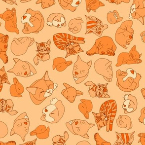 tangerine sleepy heads