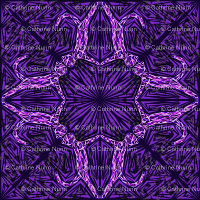 Dark Purple Cat Fragmentation