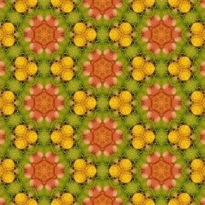 Green Orange Floral Print