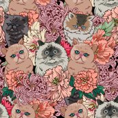 Rbecause_cat__swatch_shop_thumb