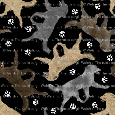 Trotting Pyrenean Shepherds smooth face and paw prints B - black