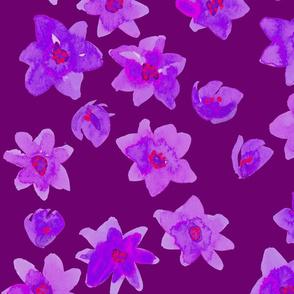 blue flowers purple