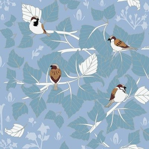 Birch + Sparrow in Blue