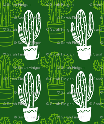 Large Green and White Cactus on Dark Green