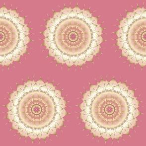 Delicate Gold Rose Mandala on rosepink