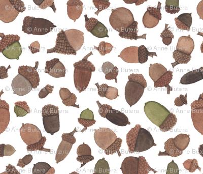 Watercolor Acorns -- Small Scale