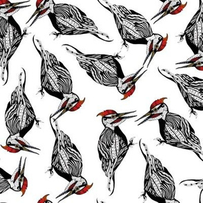 Woodland Woodpecker (Hand-Drawn)