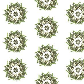 Ornate Celtic Motif
