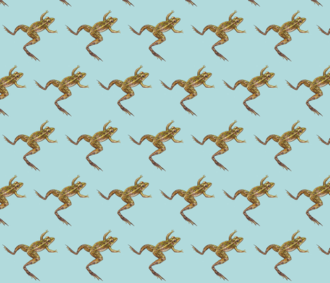 leopard frog leap, lighter blue fabric by turnbucklefarm on Spoonflower - custom fabric