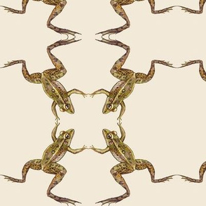 leopard frog leap, mirror, off white