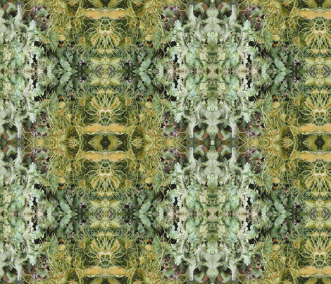 Symmagery Lichen   fabric by tara_symmagery on Spoonflower - custom fabric