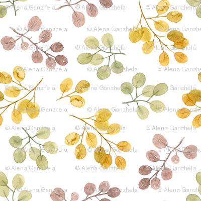 watercolor eucalyptuses branches