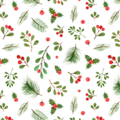 watercolor christmas plants