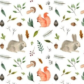 watercolor forest animals team  - squirrel and rabbit