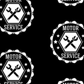 Motorcycle or Car Service