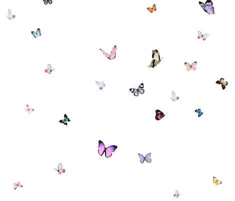 Rrrrbutterflies_spoonflower_shop_preview