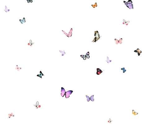 Papillon fabric by willowlanetextiles on Spoonflower - custom fabric