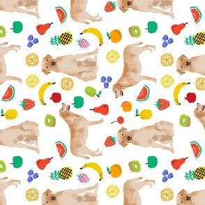 Yellow Labrador Retriever fruit fabric dog breeds white