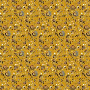 Limestone ammonites colour extra ammonites honey
