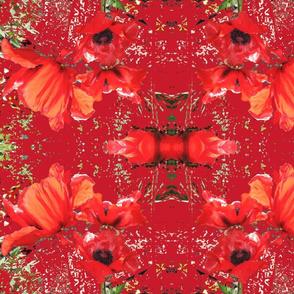 Large Poppy Bedspread